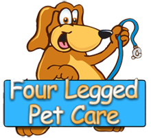 Pet Sitter Dog Walker Dog Boarding Miami Broward Palm Beach
